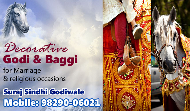 Suraj Sindhi Ghodi & Baggi Wale