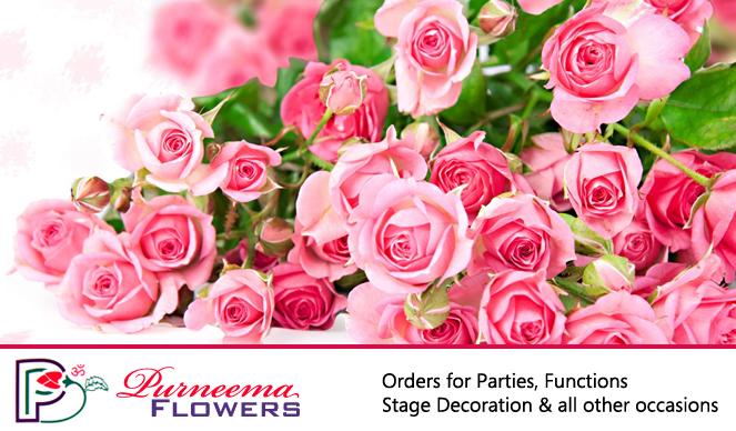 Purneema Flowers